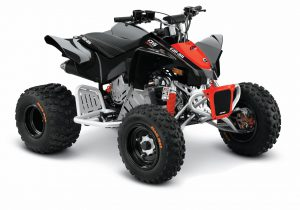 CANAM DS90X